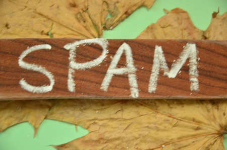 solicitation: WORD SPAM