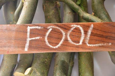 ingannare: word fool