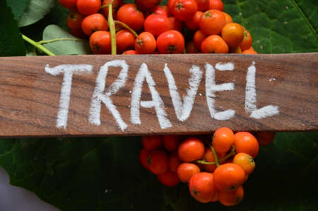 to word: WORD TRAVEL