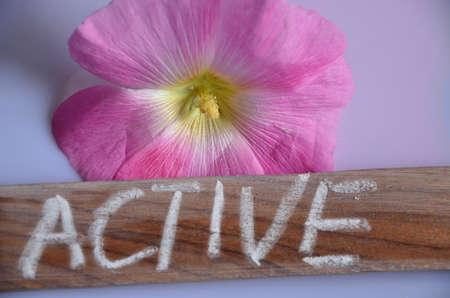 set going: active word