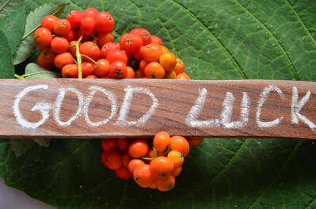 buena suerte: WORD GOOD LUCK Foto de archivo