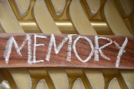 free thought: word memory