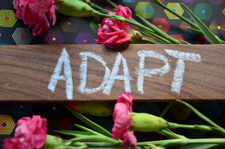 adapt: WORD ADAPT Stock Photo