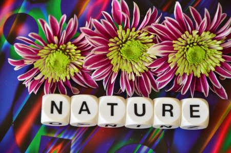 to word: WORD NATURE