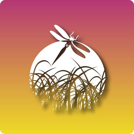 marsh plant: Zone umide Vettoriali
