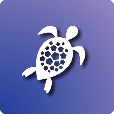 longevity: Turtle