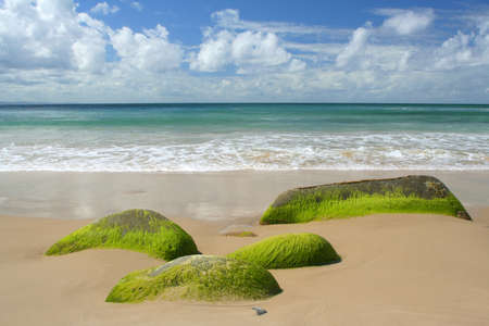 Sand sea and water Stock Photo - 1431920