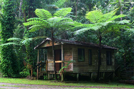 daintree cottage