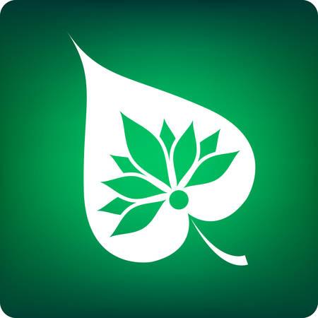 buddha lotus: bodhi