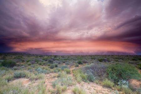 unleash: Storm cloud waiting to unleash its fury in Shark Bay, Western Australia.