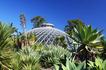 Botanic Garden dome of Brisbane, Australia surrounding by succulents.