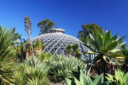 botanic: Botanic Garden dome of Brisbane, Australia surrounding by succulents.
