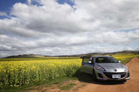 mazda: Northam, AUSTRALIA - September, 17th 2011: A Mazda 3 hatchback being parked against a backdrop of yellow canola field.