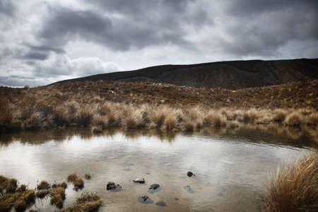 tongariro: Tongariro National Park, with its native bushland amongst dramatic skyline