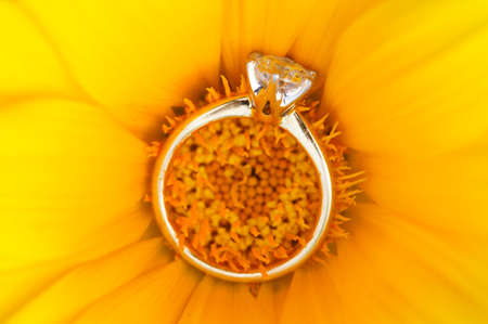 Brilliant cut solitaire diamond ring on golden yellow flower.