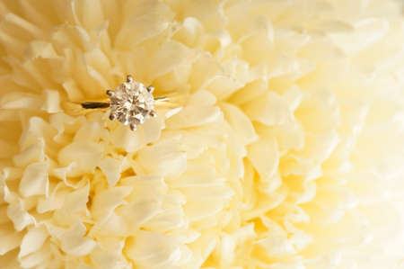 midst: Solitaire ideal cut diamond ring in the midst of beige chrysanthemum.