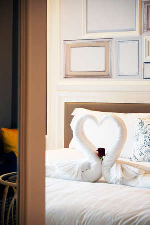 turn down: Turn down service with carefully folded swan with white towel with a red rose.
