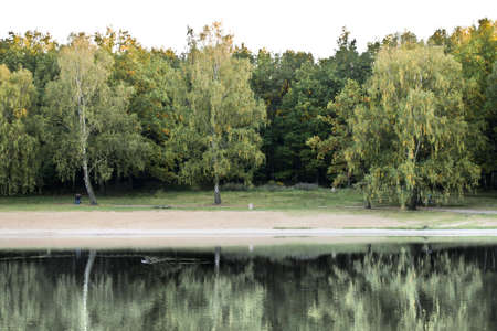 A look at the green wooded areas reflecting in water surface