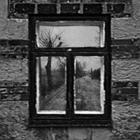 Go straight through the window Stock Photo