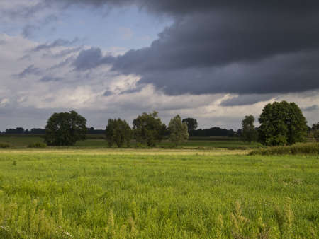 Beautiful view of the field with trees and dark storm clouds photo