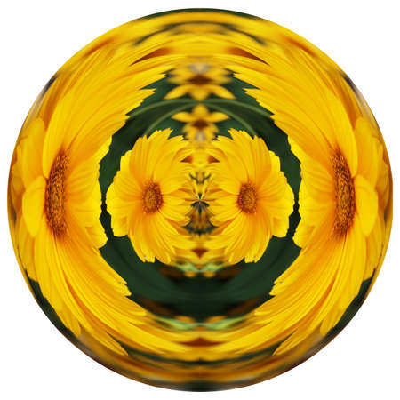 Round flower in the ball Stock Photo