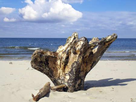Stock on the sea beach water thrown through the Baltic Sea