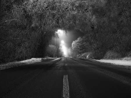 Black and white picture at night the road and trees Stock Photo