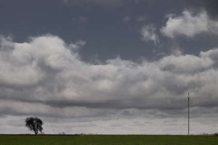 Polish field, sky and trees photo
