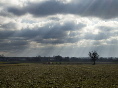 Picture Polish fields during the coming storm