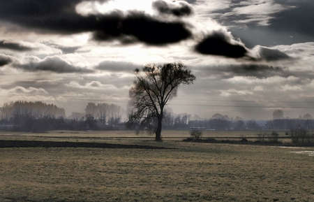 HDR Photos View forests, fields and plains in Poland Stock Photo