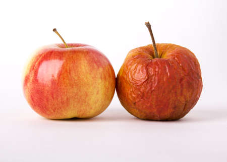 Two apples, young and old as a metaphor for aging  On a white background  photo