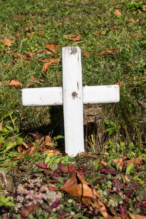forgotten tomb with a white wooden cross