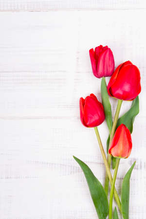 name day: red tulips on white wooden background Stock Photo