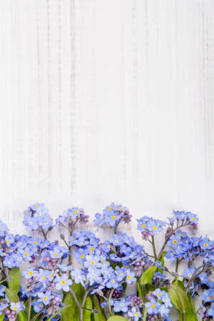 blue flowers frame on white wooden background