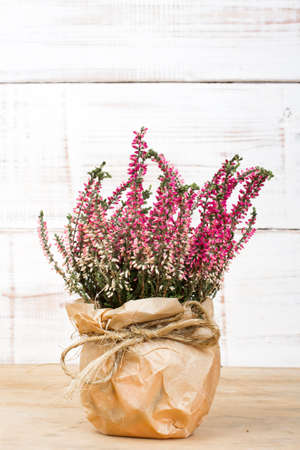 bouquet of heather on white wooden background