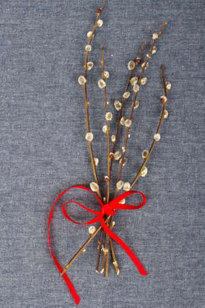 catkins: catkins bouquet on gray textile background Stock Photo
