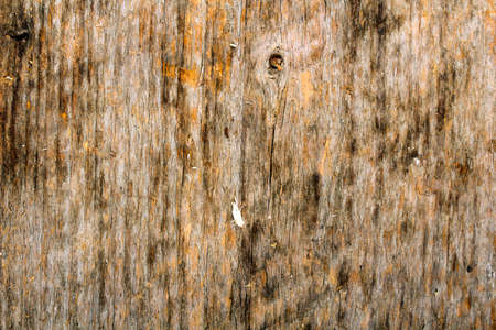 wooden plank texture for background