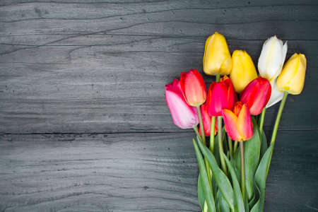 red floral: tulip bouquet on dark wooden background