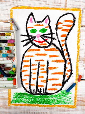 colorful drawing: fat ginger cat