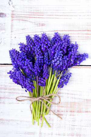 hyacinths: Muscari bouquet on a white wooden table