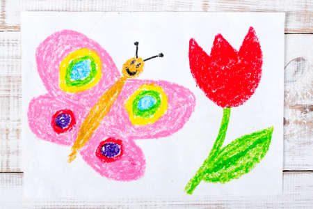 pink butterfly: colorful drawing: happy butterfly and beautiful tulip