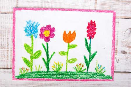 bunte Zeichnung: schöne Blumen