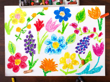 miscellaneous: colorful  drawing: miscellaneous types of flowers