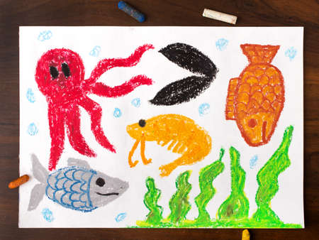 miscellaneous: colorful drawing: miscellaneous types of creatures of the sea
