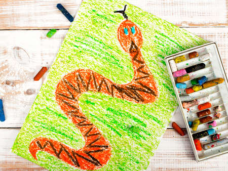 colorful drawing: snake in the grass Stock Photo