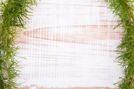 coniferous tree: coniferous tree branch on a white wooden background Stock Photo