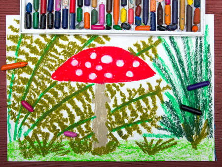 a fly agaric: Colorful drawing: Red toadstool in the grass Stock Photo