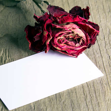 blank business card and the dried rose on wooden background Stock Photo