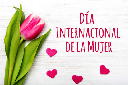 Womens Day card with Spanish words D?a International de la Mujer.Tulip flower and small wooden heart on white background