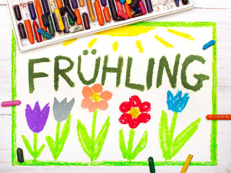 frhling: Colorful drawing:  German words Frühling (Spring) and beautiful flowers